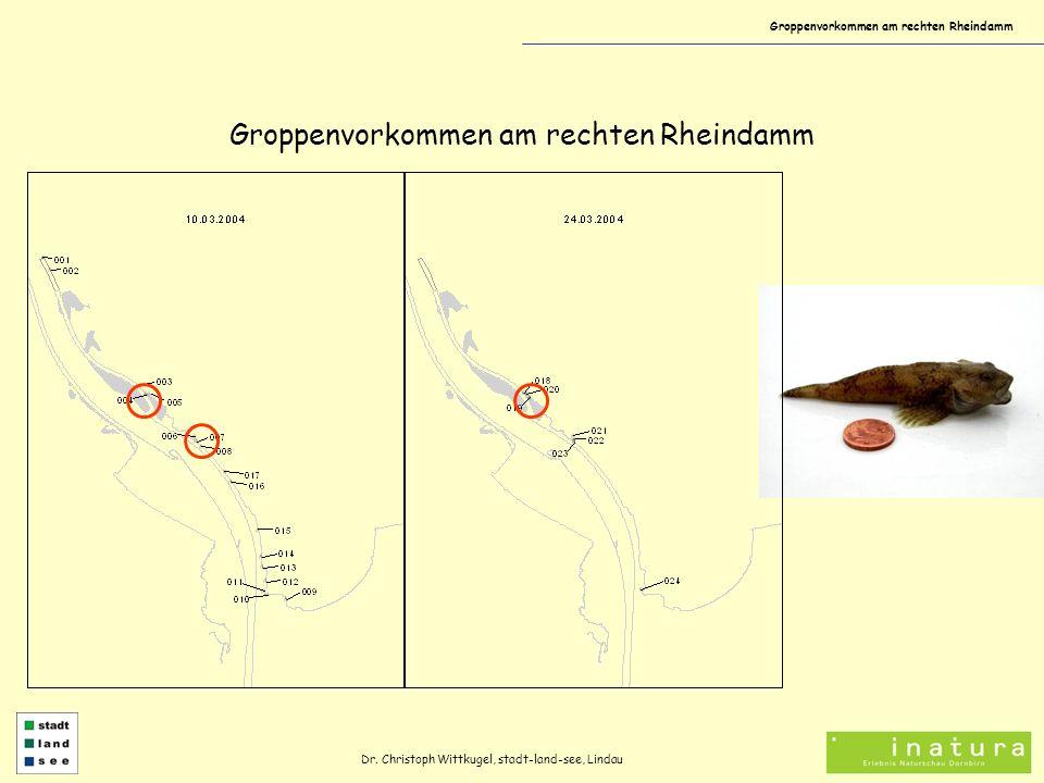Groppenvorkommen am rechten Rheindamm Dr. Christoph Wittkugel, stadt-land-see, Lindau