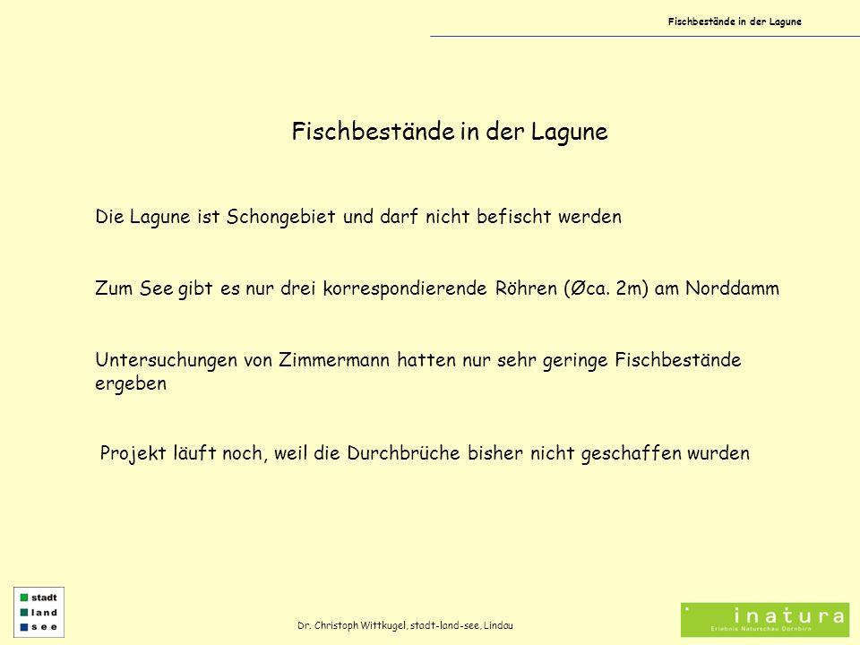 Fischbestände in der Lagune Dr. Christoph Wittkugel, stadt-land-see, Lindau Fischbestände in der Lagune Die Lagune ist Schongebiet und darf nicht befi