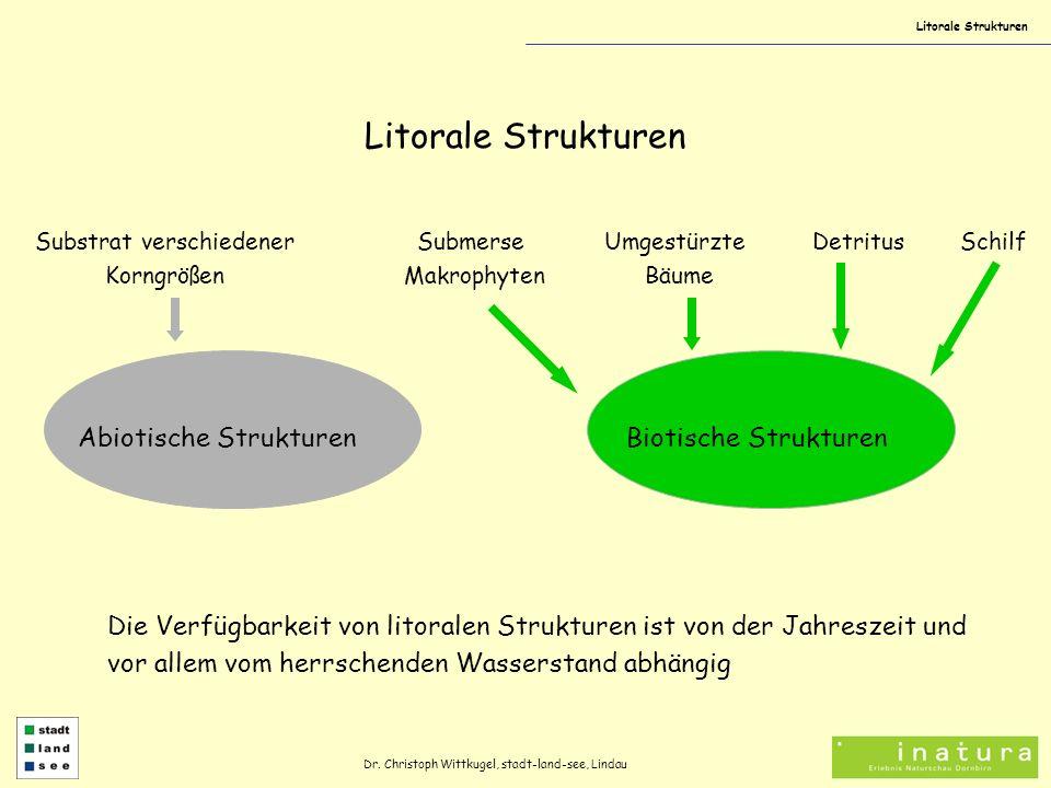Litorale Strukturen Abiotische Strukturen Substrat verschiedener Korngrößen Biotische Strukturen Submerse Makrophyten Umgestürzte Bäume DetritusSchilf Die Verfügbarkeit von litoralen Strukturen ist von der Jahreszeit und vor allem vom herrschenden Wasserstand abhängig Dr.