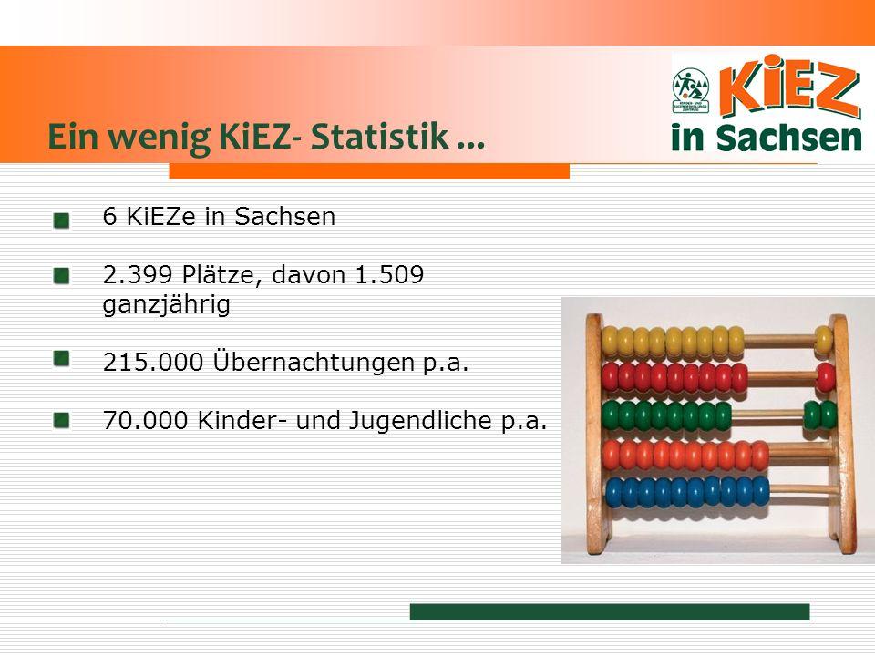 Ein wenig KiEZ- Statistik... 6 KiEZe in Sachsen 2.399 Plätze, davon 1.509 ganzjährig 215.000 Übernachtungen p.a. 70.000 Kinder- und Jugendliche p.a.