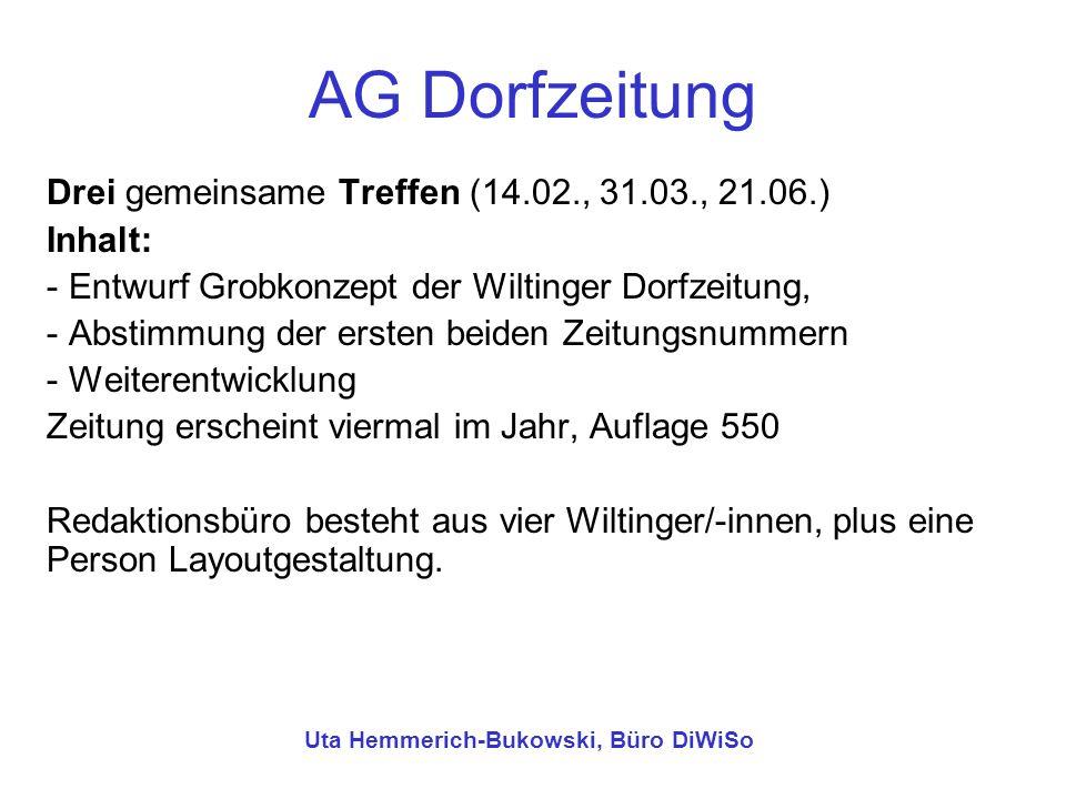 AG Dorfzeitung Drei gemeinsame Treffen (14.02., 31.03., 21.06.) Inhalt: - Entwurf Grobkonzept der Wiltinger Dorfzeitung, - Abstimmung der ersten beide