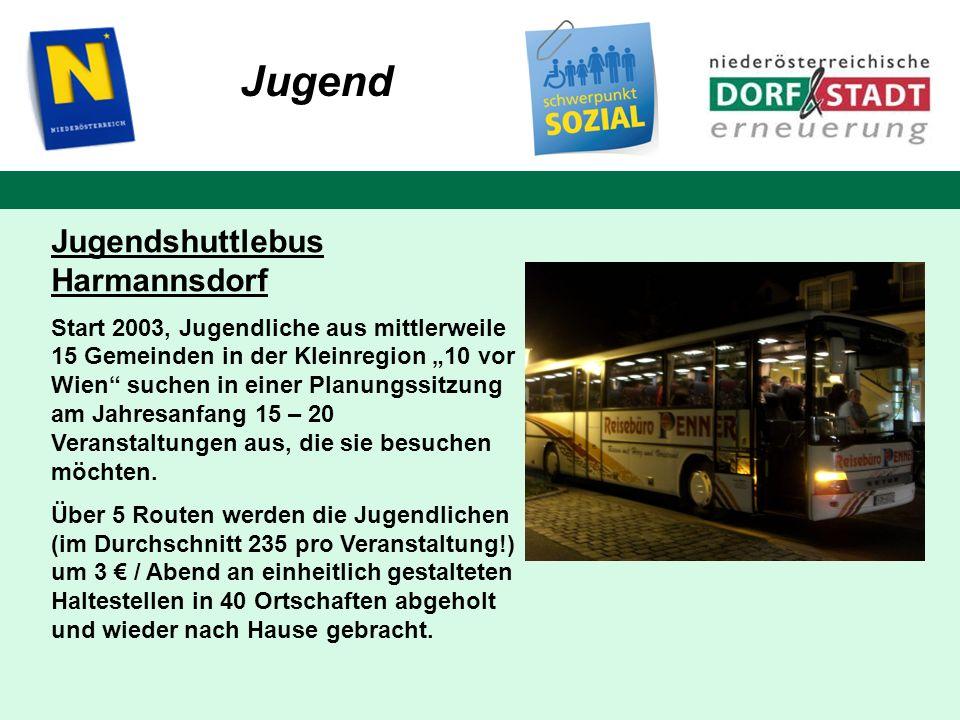 Jugend Jugendshuttlebus Harmannsdorf Start 2003, Jugendliche aus mittlerweile 15 Gemeinden in der Kleinregion 10 vor Wien suchen in einer Planungssitz