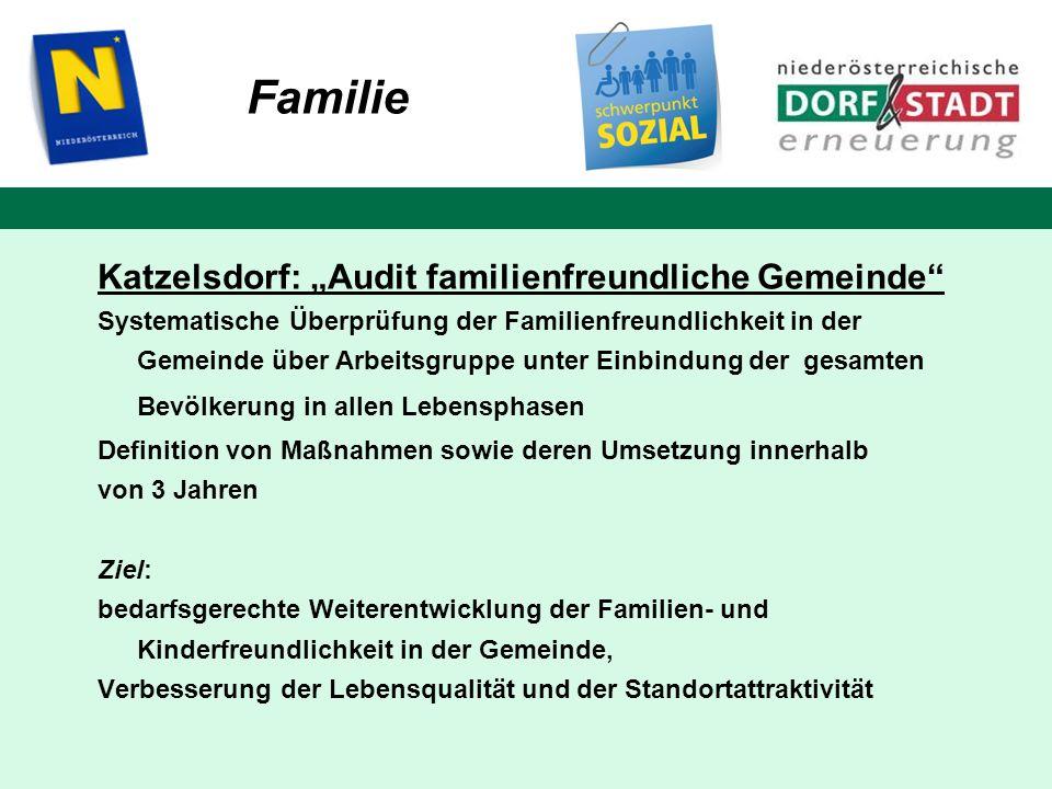 Familie Katzelsdorf: Audit familienfreundliche Gemeinde Systematische Überprüfung der Familienfreundlichkeit in der Gemeinde über Arbeitsgruppe unter