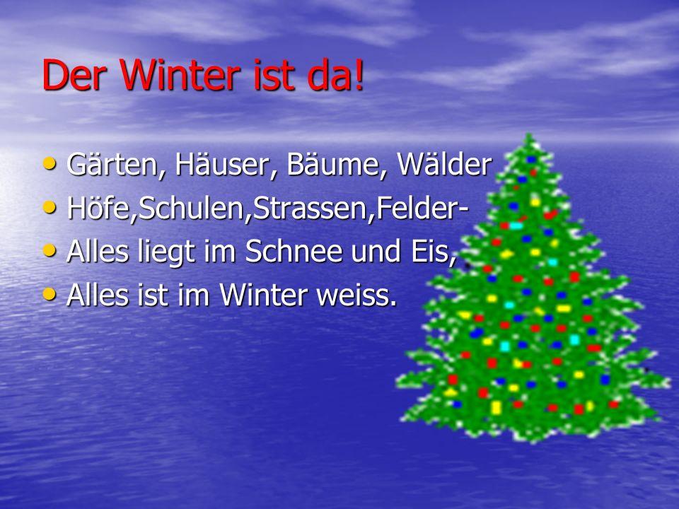 Der Winter ist da! Gärten, Häuser, Bäume, Wälder Gärten, Häuser, Bäume, Wälder Höfe,Schulen,Strassen,Felder- Höfe,Schulen,Strassen,Felder- Alles liegt