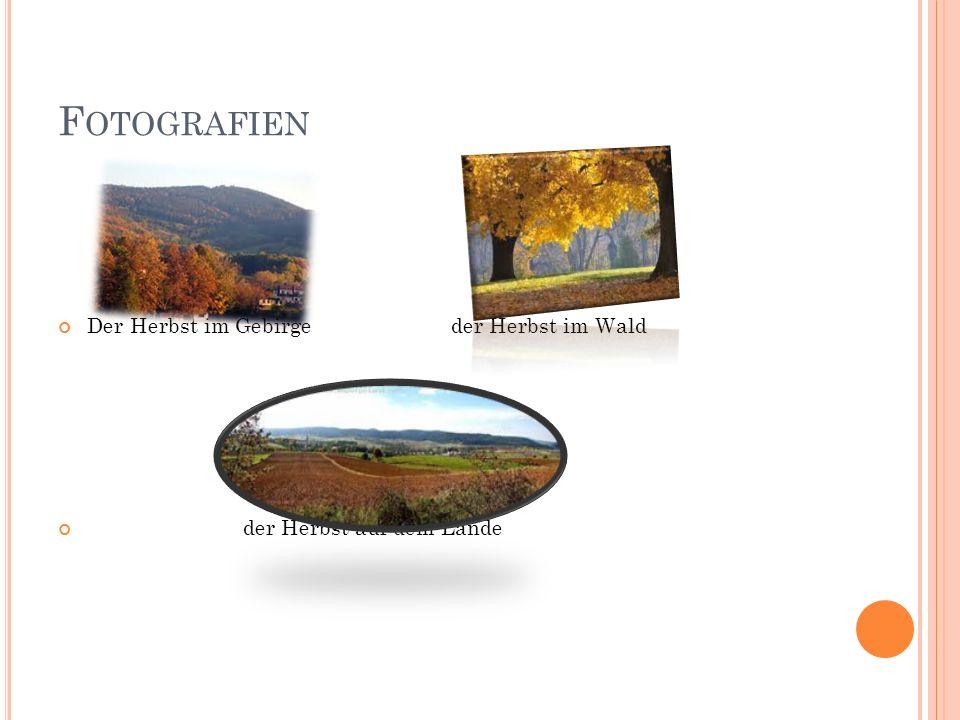 F OTOGRAFIEN Der Herbst im Gebirge der Herbst im Wald der Herbst auf dem Lande