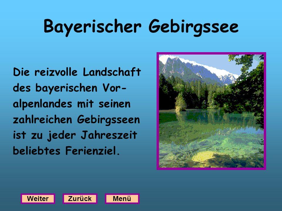 Bayerischer Gebirgssee Die reizvolle Landschaft des bayerischen Vor- alpenlandes mit seinen zahlreichen Gebirgsseen ist zu jeder Jahreszeit beliebtes
