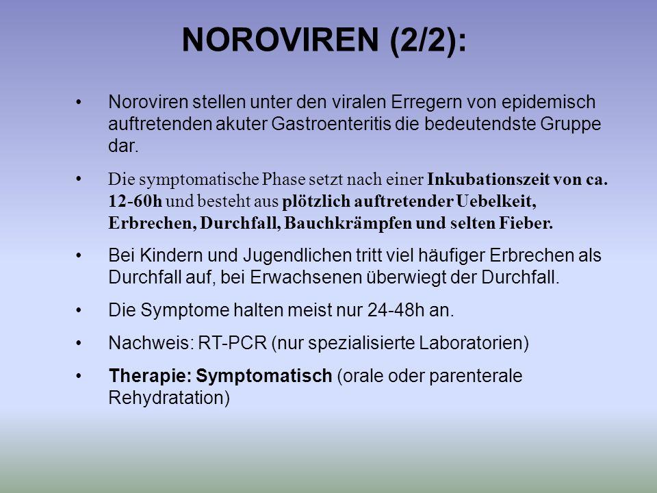 NOROVIREN (2/2): Noroviren stellen unter den viralen Erregern von epidemisch auftretenden akuter Gastroenteritis die bedeutendste Gruppe dar. Die symp