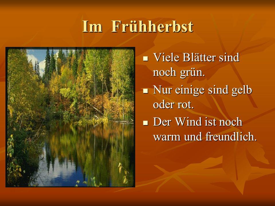 Im Frühherbst Viele Blätter sind noch grün. Viele Blätter sind noch grün. Nur einige sind gelb oder rot. Nur einige sind gelb oder rot. Der Wind ist n