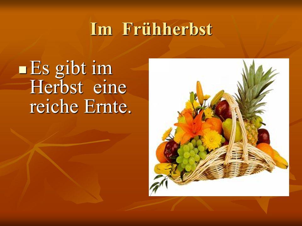 Im Frühherbst Es gibt im Herbst eine reiche Ernte. Es gibt im Herbst eine reiche Ernte.