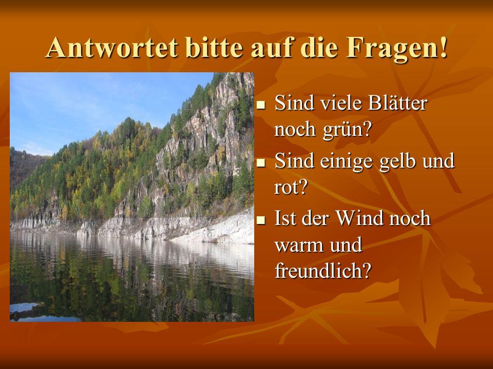 Antwortet bitte auf die Fragen! Sind viele Blätter noch grün? Sind viele Blätter noch grün? Sind einige gelb und rot? Sind einige gelb und rot? Ist de