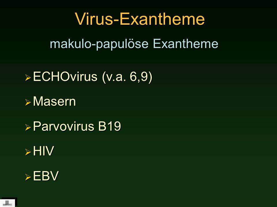 Virus-Exantheme makulo-papulöse Exantheme ECHOvirus (v.a. 6,9) ECHOvirus (v.a. 6,9) Masern Masern Parvovirus B19 Parvovirus B19 HIV HIV EBV EBV