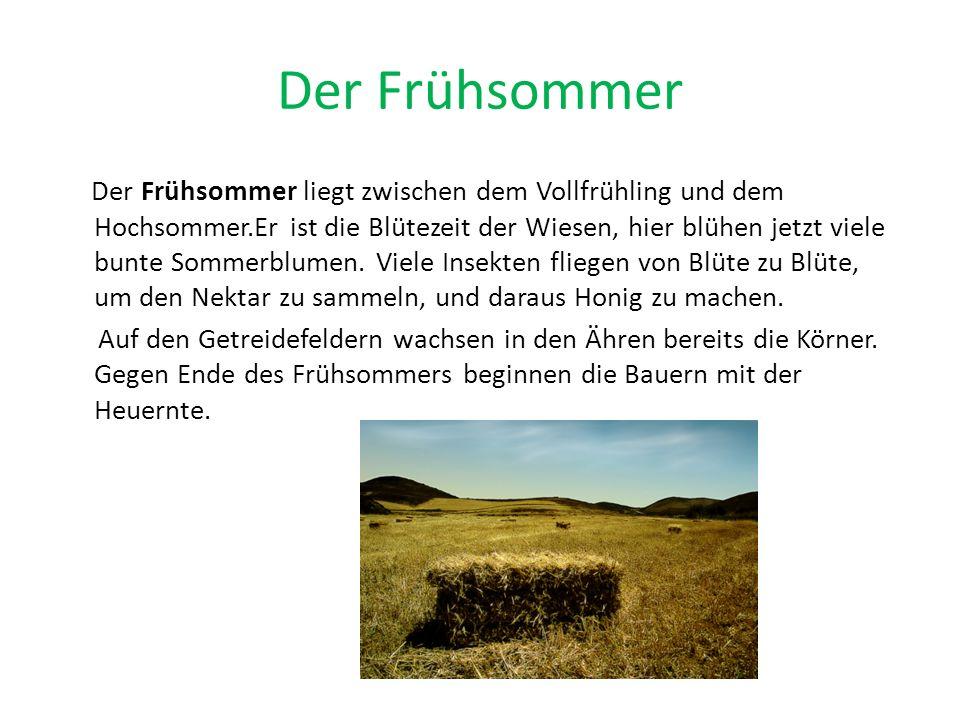 Der Hochsommer Der Hochsommer ist gewöhnlich die heißeste Jahreszeit und liegt in Deutschland meistens in den Monaten Juli und August.Viele Früchte sind bereits reif (Johannisbeeren, Erdbeeren, Kirschen) und können gepflückt werden.