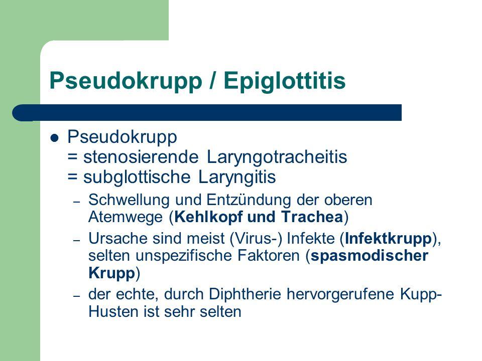 Meningitis - Erregerspektrum Alter Erreger Neugeborenes / Frühgeborene Kleinkind und Schulkind Ab Jugendalter Meningokokken++ B-Streptokokken+ E.