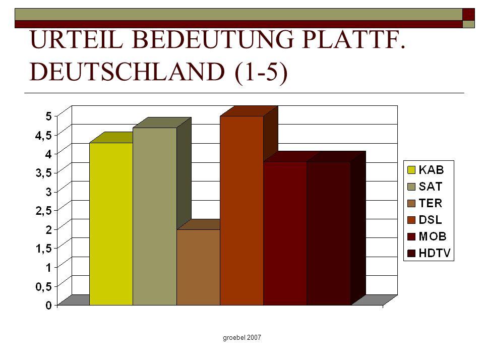 groebel 2007 URTEIL BEDEUTUNG PLATTF. DEUTSCHLAND (1-5)