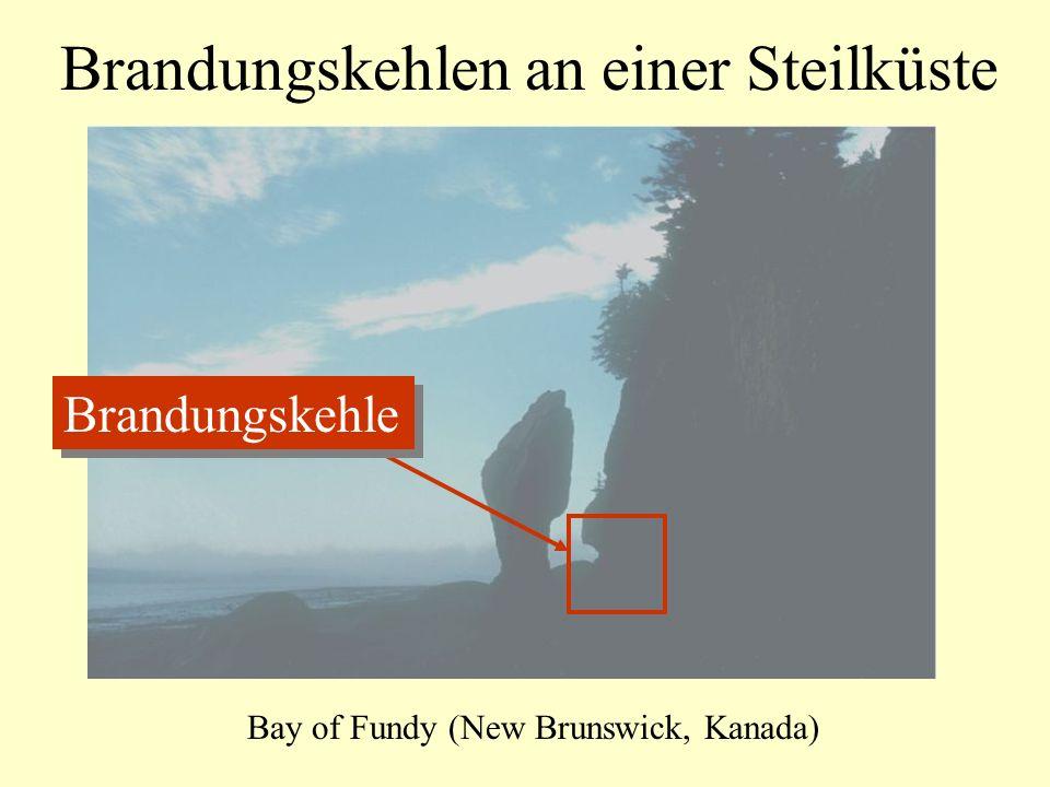 Brandungskehlen an einer Steilküste Bay of Fundy (New Brunswick, Kanada) Brandungskehle