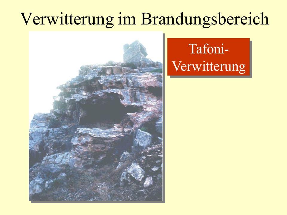 Verwitterung im Brandungsbereich Tafoni- Verwitterung Tafoni- Verwitterung