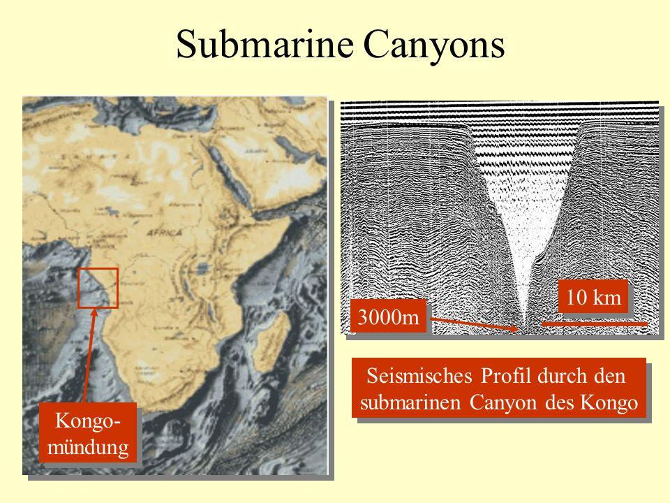 Submarine Canyons Kongo- mündung Kongo- mündung 3000m 10 km Seismisches Profil durch den submarinen Canyon des Kongo Seismisches Profil durch den submarinen Canyon des Kongo