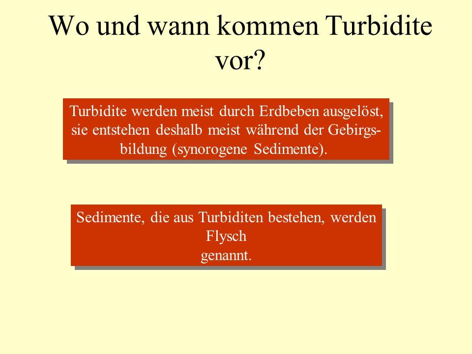 Wo und wann kommen Turbidite vor.