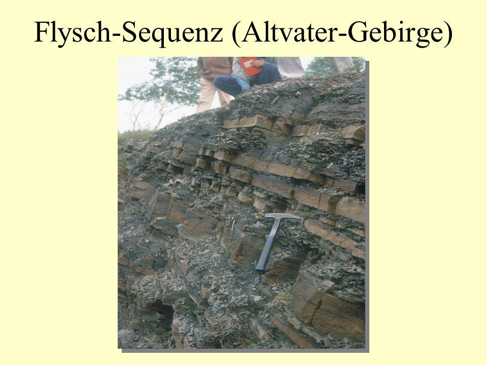 Flysch-Sequenz (Altvater-Gebirge)