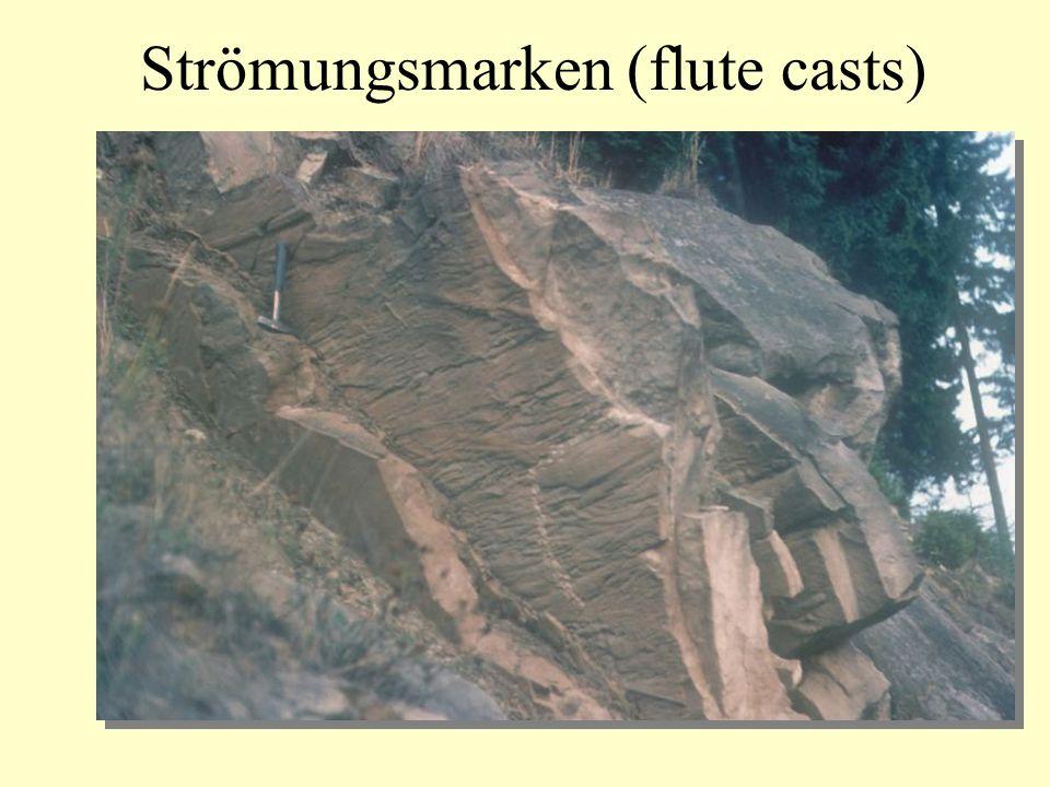 Strömungsmarken (flute casts)