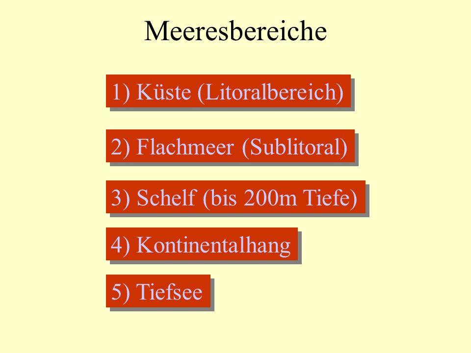Meeresbereiche 1) Küste (Litoralbereich) 2) Flachmeer (Sublitoral) 3) Schelf (bis 200m Tiefe) 4) Kontinentalhang 5) Tiefsee