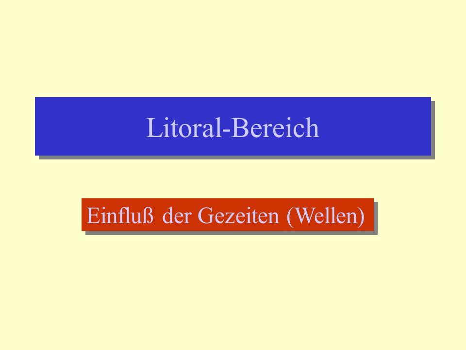 Litoral-Bereich Einfluß der Gezeiten (Wellen)