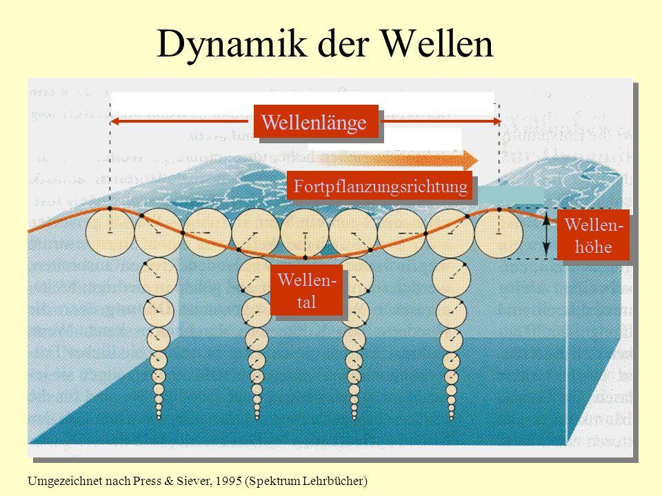 Dynamik der Wellen Fortpflanzungsrichtung Wellenlänge Wellen- höhe Wellen- höhe Wellen- tal Wellen- tal Umgezeichnet nach Press & Siever, 1995 (Spektrum Lehrbücher)