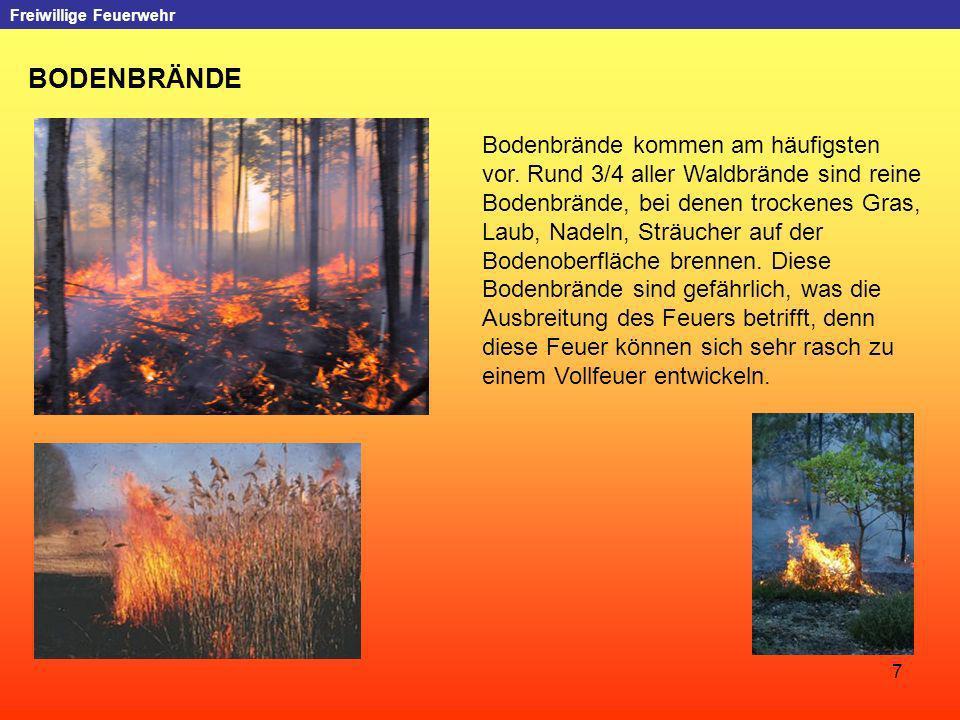 7 Freiwillige Feuerwehr BODENBRÄNDE Bodenbrände kommen am häufigsten vor. Rund 3/4 aller Waldbrände sind reine Bodenbrände, bei denen trockenes Gras,