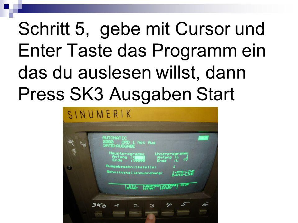 Schritt 5, gebe mit Cursor und Enter Taste das Programm ein das du auslesen willst, dann Press SK3 Ausgaben Start