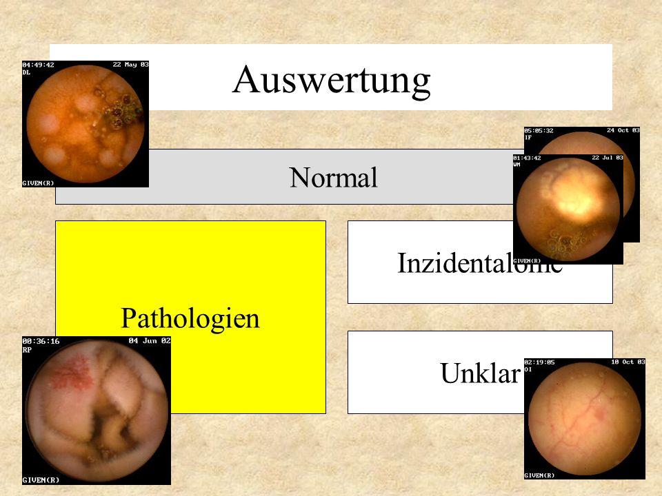 Auswertung Pathologien Normal Inzidentalome Unklar