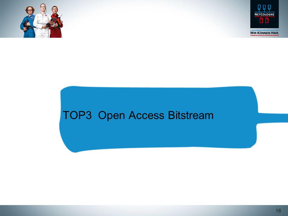 16 TOP3 Open Access Bitstream