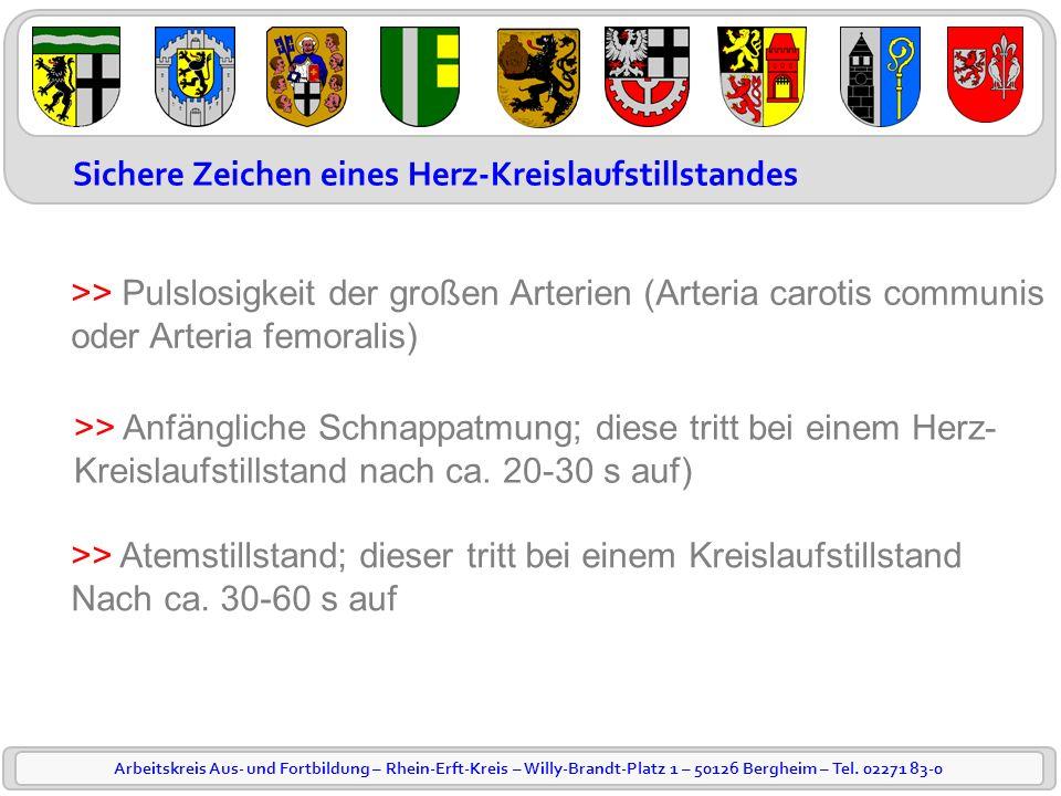 Arbeitskreis Aus- und Fortbildung – Rhein-Erft-Kreis – Willy-Brandt-Platz 1 – 50126 Bergheim – Tel. 02271 83-0 Sichere Zeichen eines Herz-Kreislaufsti