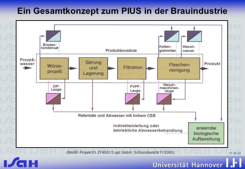 11.06.02 Ein Gesamtkonzept zum PIUS in der Brauindustrie (BmBF-Projekt 01 ZF9501/3 upt GmbH, Schlussbericht 11/2000)
