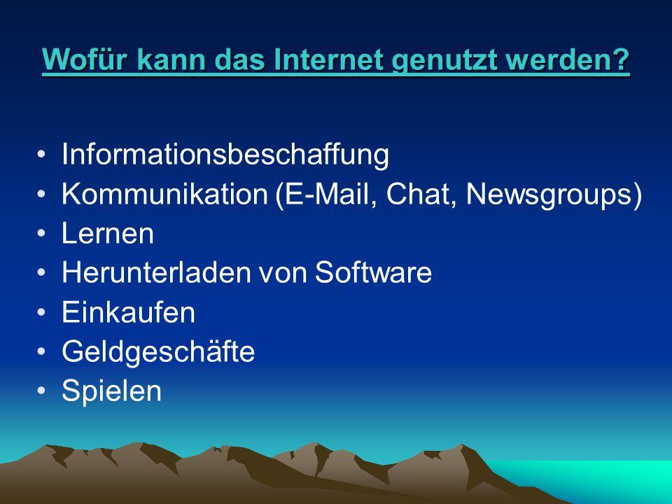 Wofür kann das Internet genutzt werden? Informationsbeschaffung Kommunikation (E-Mail, Chat, Newsgroups) Lernen Herunterladen von Software Einkaufen G