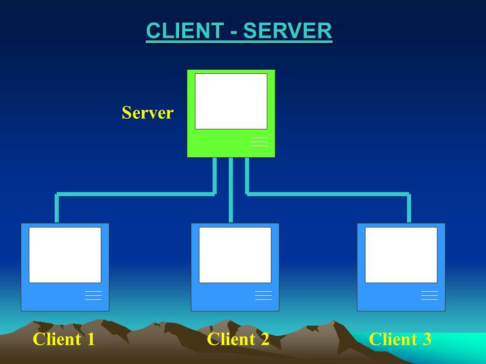 CLIENT - SERVER CLIENT - SERVER Server Client 1Client 2 Client 3