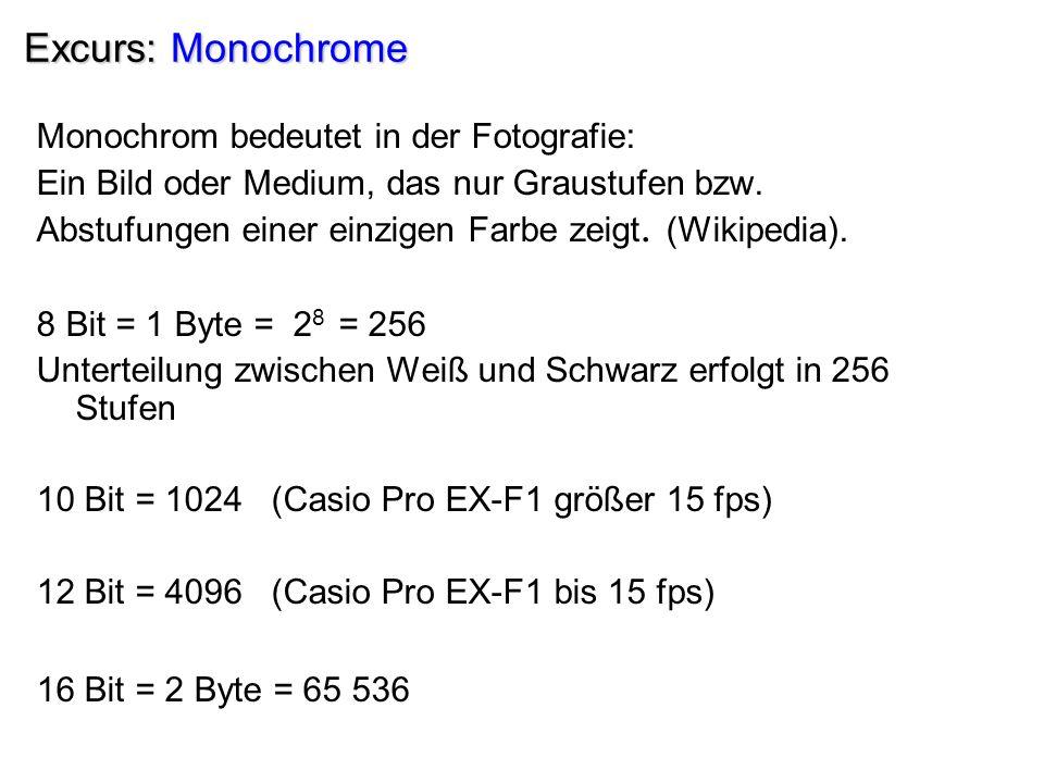 Excurs: Monochrome Monochrom bedeutet in der Fotografie: Ein Bild oder Medium, das nur Graustufen bzw.