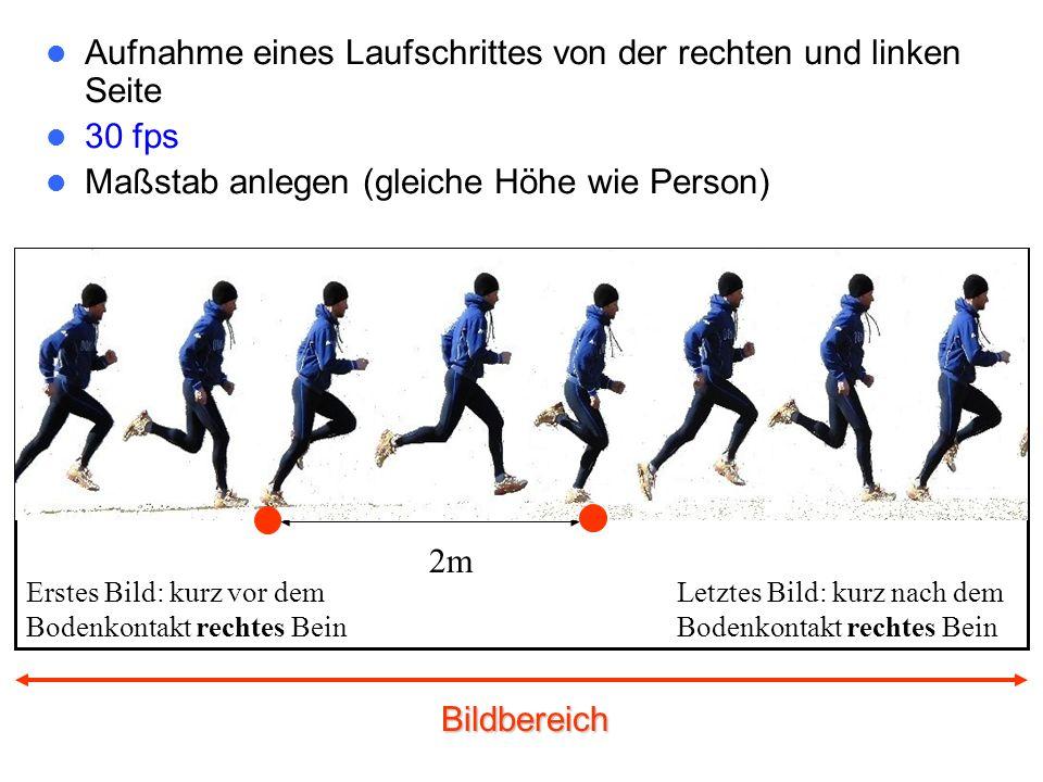 Bildbereich Aufnahme eines Laufschrittes von der rechten und linken Seite 30 fps Maßstab anlegen (gleiche Höhe wie Person) 2m Erstes Bild: kurz vor dem Bodenkontakt rechtes Bein Letztes Bild: kurz nach dem Bodenkontakt rechtes Bein