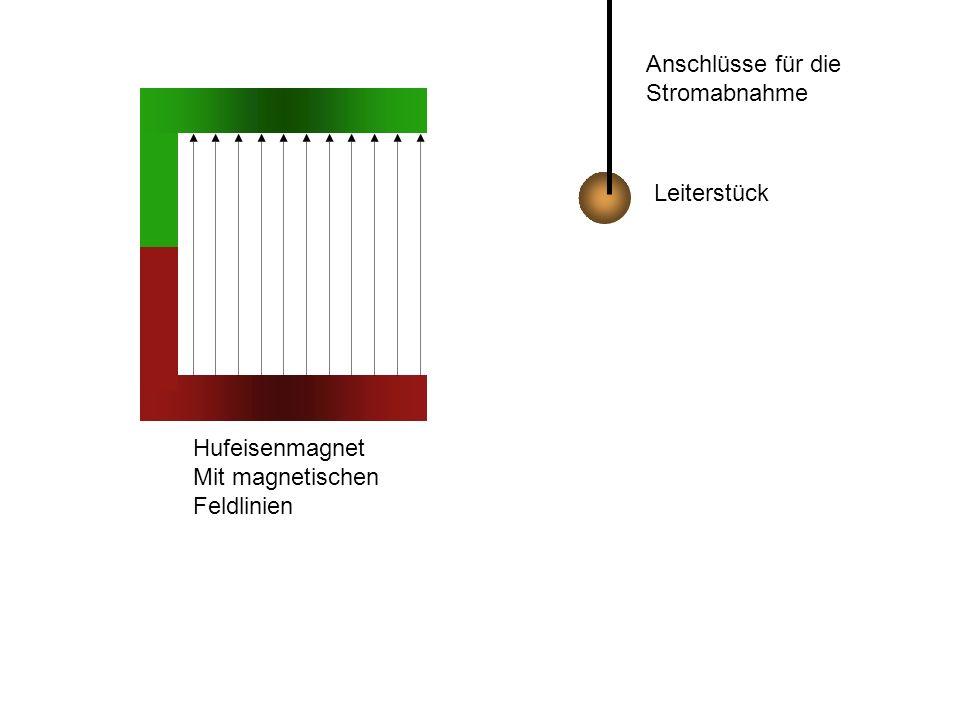 Leiterstück Hufeisenmagnet Mit magnetischen Feldlinien Anschlüsse für die Stromabnahme