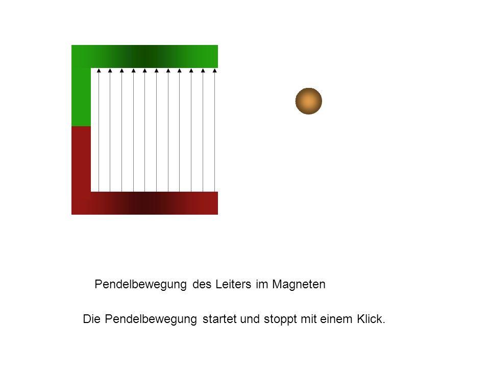 Pendelbewegung des Leiters im Magneten Die Pendelbewegung startet und stoppt mit einem Klick.