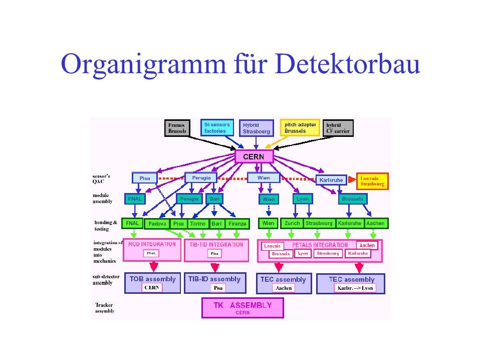 Organigramm für Detektorbau