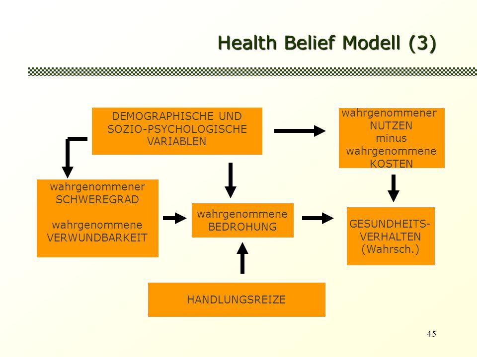 45 Health Belief Modell (3) wahrgenommener SCHWEREGRAD wahrgenommene VERWUNDBARKEIT wahrgenommene BEDROHUNG GESUNDHEITS- VERHALTEN (Wahrsch.) wahrgenommener NUTZEN minus wahrgenommene KOSTEN HANDLUNGSREIZE DEMOGRAPHISCHE UND SOZIO-PSYCHOLOGISCHE VARIABLEN