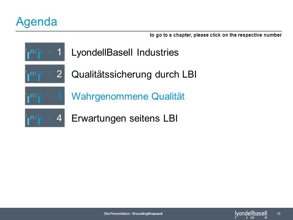 Site Presentation - Wesseling/Knapsack 12 Agenda Erwartungen seitens LBI 4 Qualitätssicherung durch LBI 2 LyondellBasell Industries 1 to go to a chapt