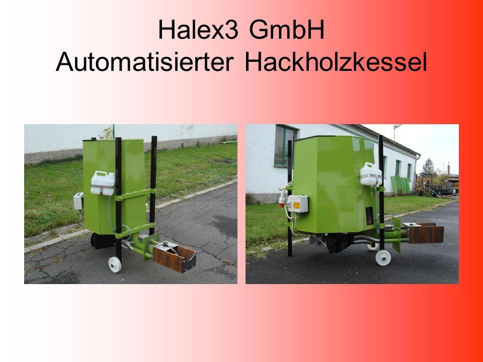 Halex3 GmbH Brennersteuerung und Motorschutz