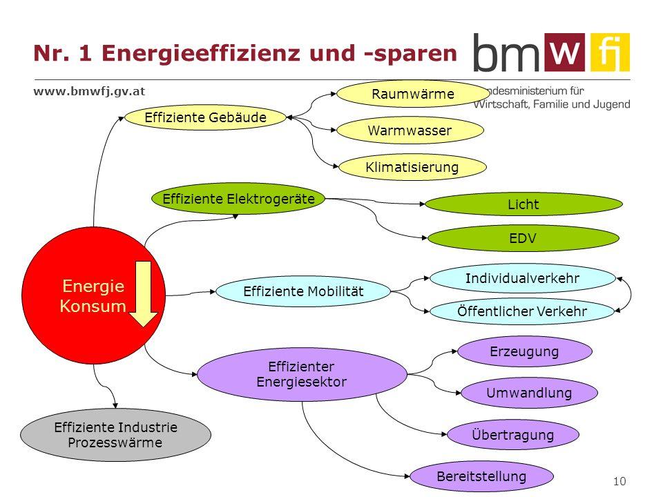 www.bmwfj.gv.at 10 Effiziente Gebäude Effiziente Elektrogeräte Effiziente Mobilität Individualverkehr Öffentlicher Verkehr Licht EDV Raumwärme Klimati