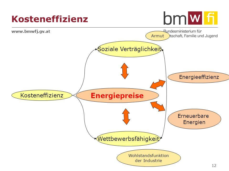 www.bmwfj.gv.at 12 Kosteneffizienz Soziale Verträglichkeit Wettbewerbsfähigkeit Kosteneffizienz Energiepreise Wohlstandsfunktion der Industrie Erneuer