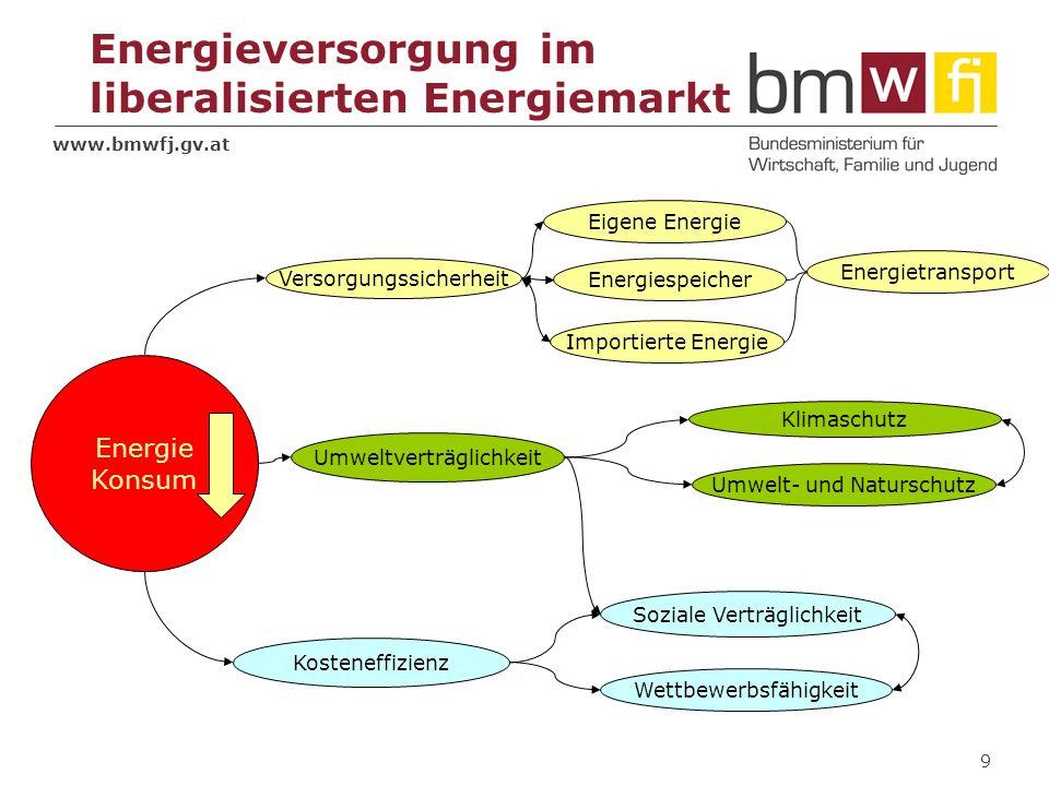 www.bmwfj.gv.at 9 Versorgungssicherheit Umweltverträglichkeit Kosteneffizienz Soziale Verträglichkeit Wettbewerbsfähigkeit Klimaschutz Umwelt- und Nat