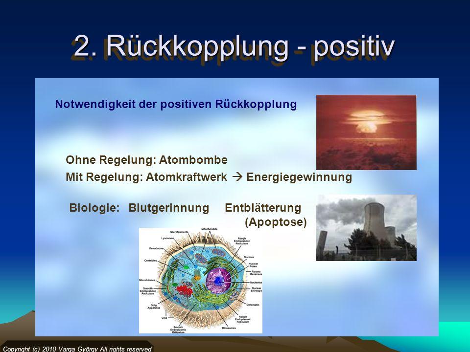 2. Rückkopplung - positiv Copyright (c) 2010 Varga György All rights reserved Notwendigkeit der positiven Rückkopplung Ohne Regelung: Atombombe Mit Re
