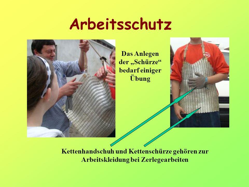 Arbeitsschutz Kettenhandschuh und Kettenschürze gehören zur Arbeitskleidung bei Zerlegearbeiten Das Anlegen der Schürze bedarf einiger Übung