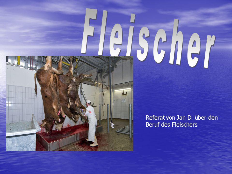 Referat von Jan D. über den Beruf des Fleischers
