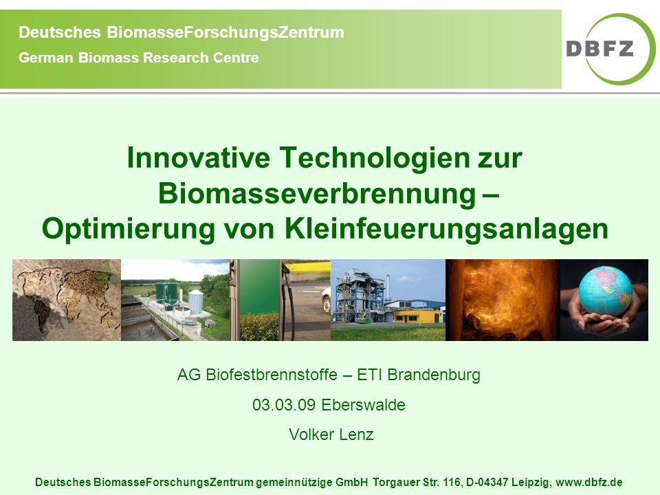 Deutsches BiomasseForschungsZentrum gemeinnützige GmbH Torgauer Str. 116, D-04347 Leipzig, www.dbfz.de Deutsches BiomasseForschungsZentrum German Biom